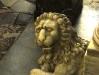 Siracusa - Leão sério