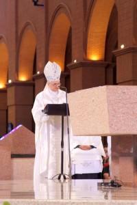 romaria diocesana (18)